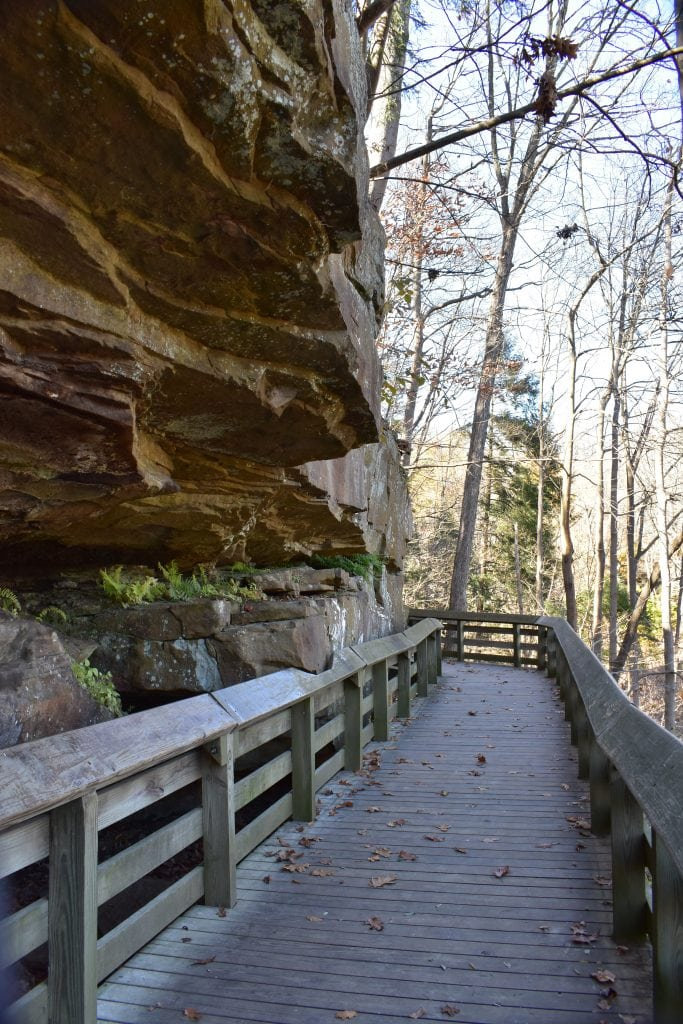 wooden boardwalk against a rock ledge and a deciduous forest