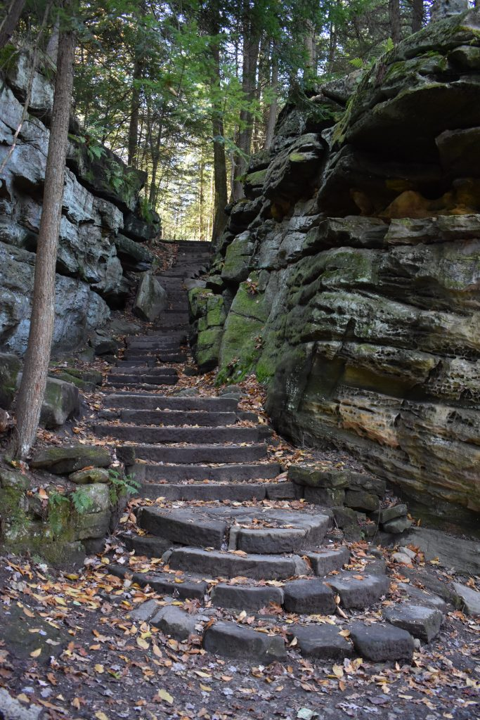 staircase cut into natural stone rock ledges in forest