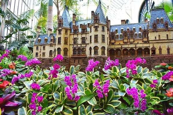 Miniature replica of the Biltmore House surrounded by vibrantly colored orchids and palm trees of the Conservatory