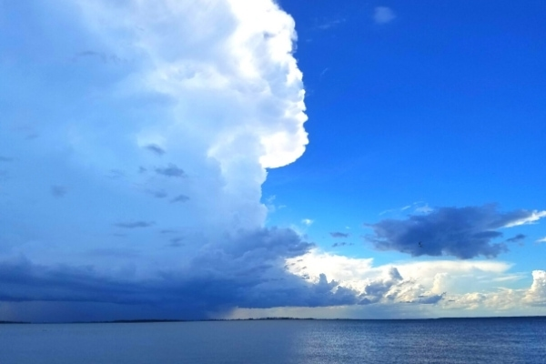 white and gray thunderheads in a brilliant blue sky over the ocean