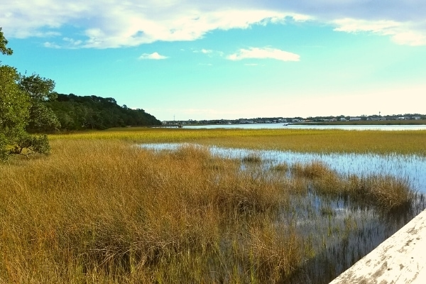 Big Bay Creek's yellow-brown marsh as seen from the Edisto Beach State Park dock on a clear blue-sky day
