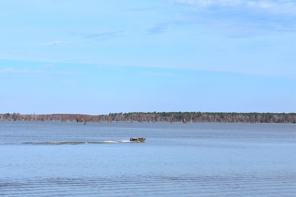 A blue sky and blue Lake Marion are divided by a brown tree line on the horizon as a single boat jets across the lake