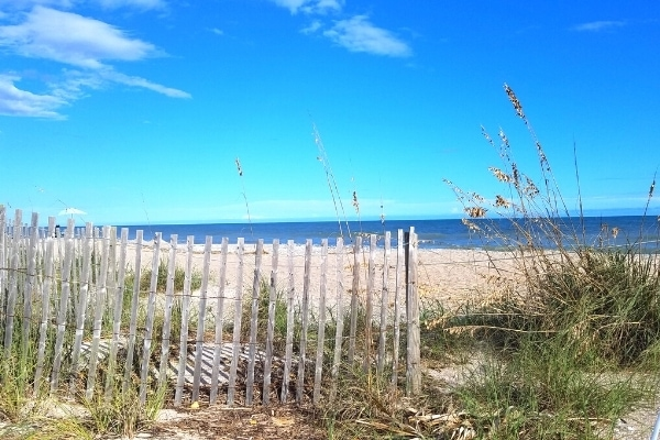 Clear blue skies over a blue ocean with a sandy beach with dune fence and grass