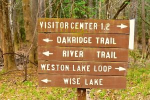 Hiking Trails in Congaree National Park