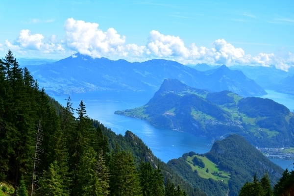 Mountain view of green forested mountains, blue sky with white clouds, and blue Lake Lucerne in the valley