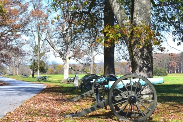 Civil War cannons line the edge of a wooded area along Seminary Ridge at Gettysburg