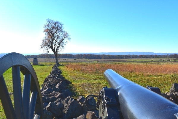 Civil War cannon aimed along the length of a low stone wall at a lone tree marking The Angle at Gettysburg Battlefield