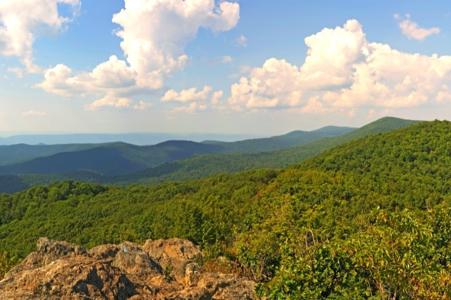 Views of the forested Blue Ridge Mountains on a sunny day in Shenandoah