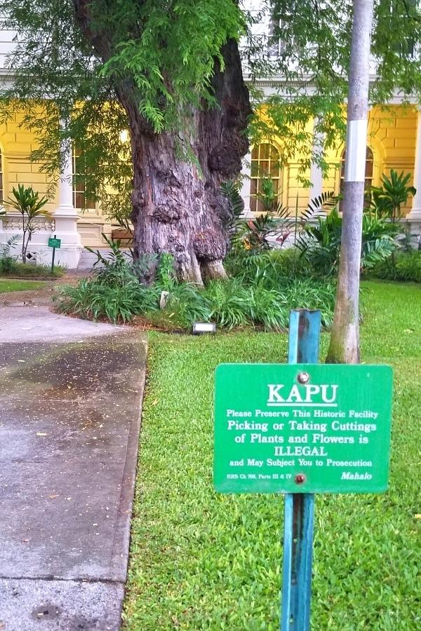 Green Kapu sign near Iolani Palace in Honolulu, HI, warning it's forbidden to pick flowers or cut plants