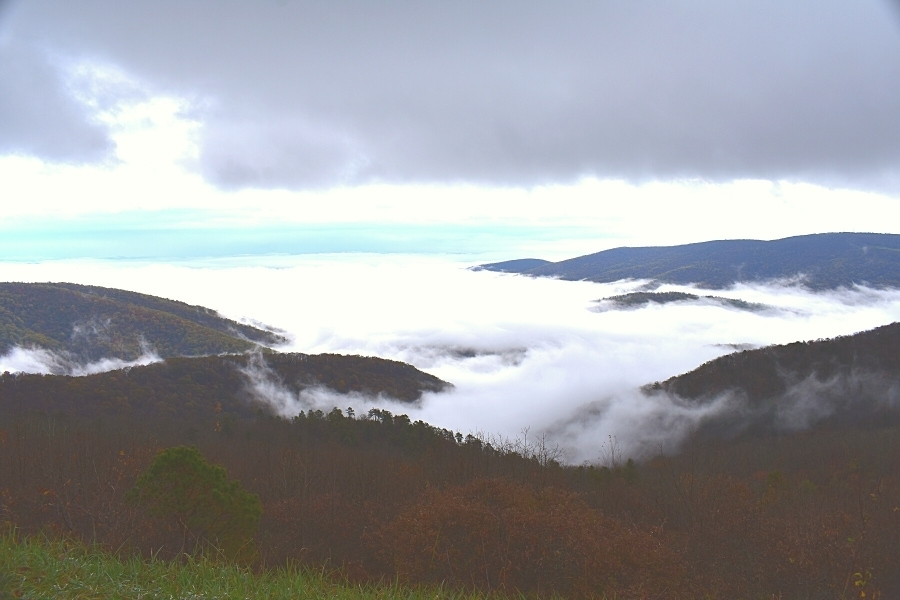 Thick white clouds fill a mountain valley on a gray day in Shenandoah National Park