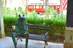 Read more about the article Complete Guide to One Relaxing Day at the Charleston Tea Garden